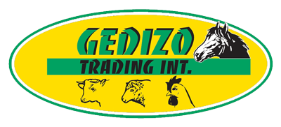Gedizo Trading